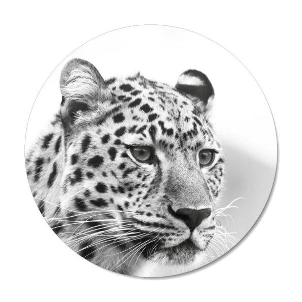 Mini muurcirkel Leopard black and white - Dutch Sprinkles