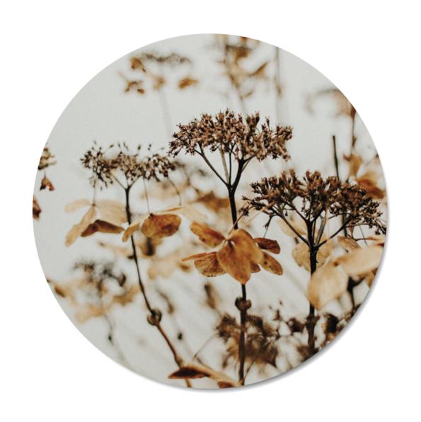 Mini muurcirkel Autumn Flowers 2021 Dutch Sprinkles