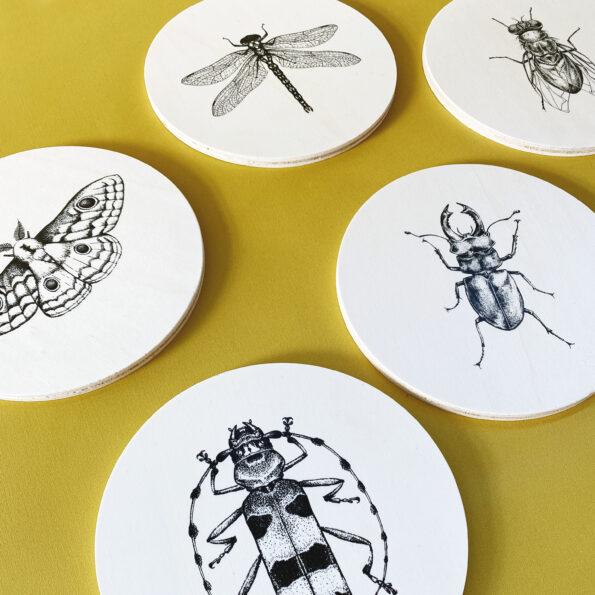Foto houten cirkels insecten vierkant - low res productafbeelding